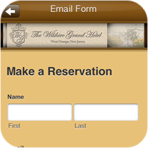 Custom Email Forms